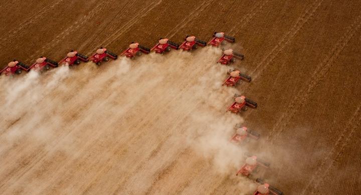 #MT é responsável por quase 30% da produção nacional de soja e milho, segundo IBGE