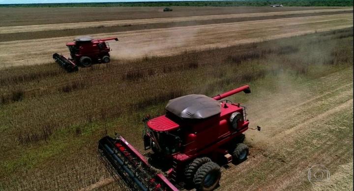#Índios plantam soja no Mato Grosso e levantam polêmica