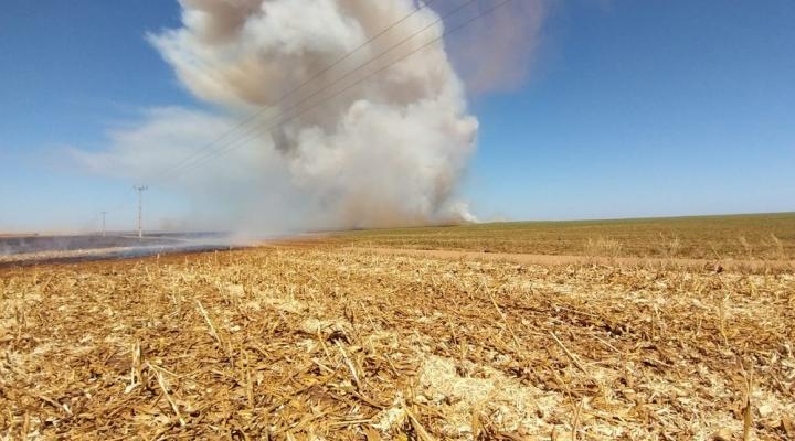 #Fogo atinge 3 fazendas e é controlado por funcionários em Sorriso (MT)