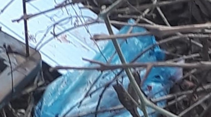 #Mulher joga recém-nascida em terreno baldio e é procurada pela polícia em MT