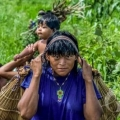 Xavantes em Mato Grosso vivem epidemia de diabetes