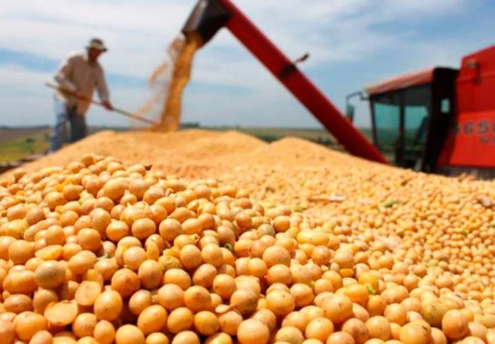 IMEA constata nova alta e preço da soja em Mato Grosso vai a R$ 154