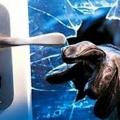 Polícia Militar de Juína prende suspeito que pulou o muro de uma residência para furtar um botijão de gás