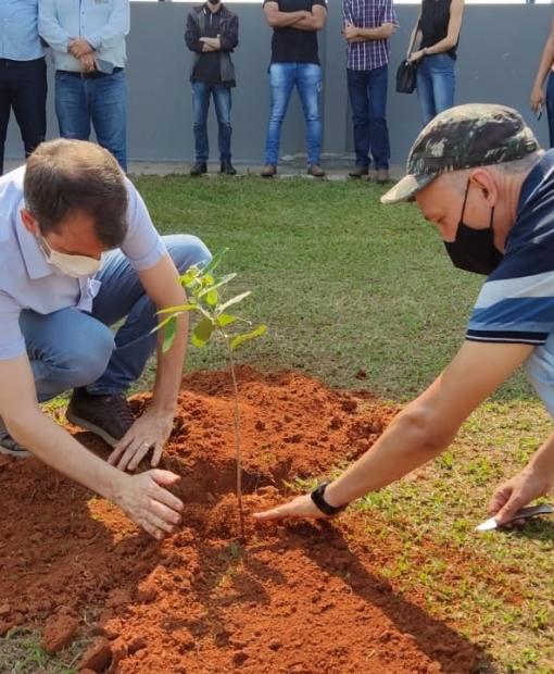 Dia da árvore foi marcado por plantio em Juína