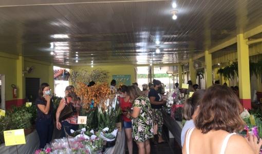 Escola Pestalozzi de Juína terá feira de flores de Holambra até domingo